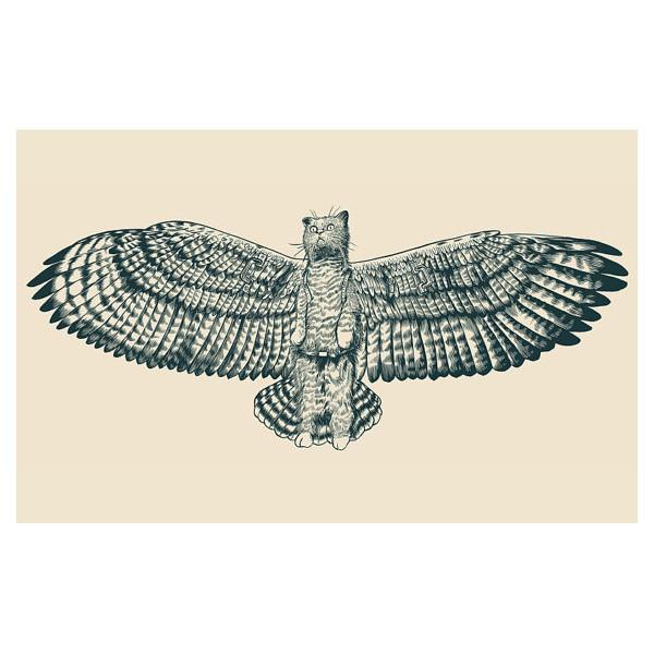 FlyingMau_PaulBorchers